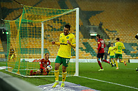 6th April 2021; Carrow Road, Norwich, Norfolk, England, English Football League Championship Football, Norwich versus Huddersfield Town; Emi Buendia of Norwich City celebrates the goal by Kieran Dowell for 5-0