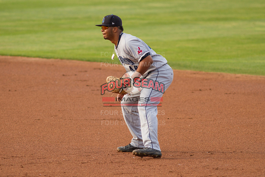 Lake County Captains first baseman Bobby Bradley (44) during a Midwest League game against the Wisconsin Timber Rattlers on June 3rd, 2015 at Fox Cities Stadium in Appleton, Wisconsin. Wisconsin defeated Lake County 3-2. (Brad Krause/Four Seam Images)