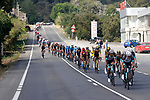 The peloton led by Team BikeExchange during Stage 19 of La Vuelta d'Espana 2021, running 191.2km from Tapia de Casariego to Monforte de Lemos, Spain. 3rd September 2021.    <br /> Picture: Luis Angel Gomez/Photogomezsport   Cyclefile<br /> <br /> All photos usage must carry mandatory copyright credit (© Cyclefile   Luis Angel Gomez/Photogomezsport)