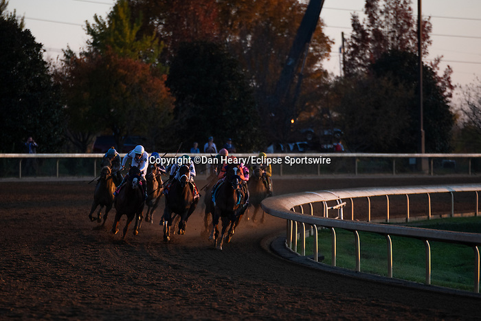 November 7, 2020 : Authentic, ridden by John Velazquez, wins the Longines Classic on Breeders' Cup Championship Saturday at Keeneland Race Course in Lexington, Kentucky on November 7, 2020. Dan Heary/Breeders' Cup/Eclipse Sportswire/CSM