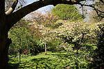 Private gardens Cadogan square London England 2006
