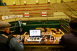 Kenmare Mart Dan McCarthy (Mart Manager)Kevin O Leary, and George O Neill in the ring.