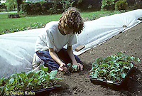 HS17-030z  Girl transplanting broccoli seedlings in garden, row covering