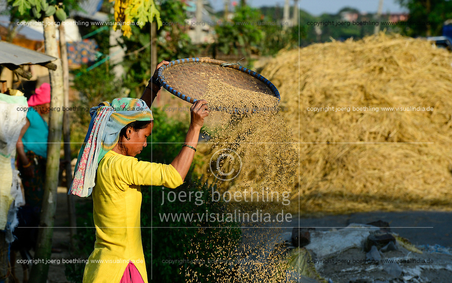 NEPAL, Terai, Sauraha, the Terai is the grain basket of the country, rice farming, harvest, woman winnowing paddy to separate chaff from grain / NEPAL, Terai, Sauraha, das Terai ist die Kornkammer Nepals, Reisernte, Frau trennt die Spreu vom Reiskorn