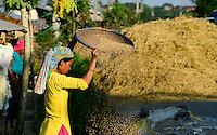 NEPAL, Terai, Sauraha, the Terai is the grain basket of the country, rice farming, harvest, woman winnowing paddy to separate chaff from grain / NEPAL, Terai, Sauraha, das Terai ist die Kornkammer Nepals, Reisernte, Frau trennt die Spreu vom Reiskorn