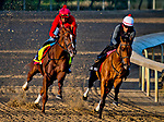 LOUISVILLE, KY - APRIL 28: Flameaway (left), trained by Mark Casse, exercises in preparation for the Kentucky Derby at Churchill Downs on April 28, 2018 in Louisville, Kentucky. (Photo by Scott Serio/Eclipse Sportswire/Getty Images)