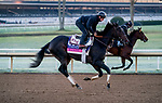 October 31, 2020: Madone, trained by trainer Simon Callaghan, exercises in preparation for the Breeders' Cup Juvenile Fillies Turf at Keeneland Racetrack in Lexington, Kentucky on October 31, 2020. Scott Serio/Eclipse Sportswire/Breeders Cup/CSM