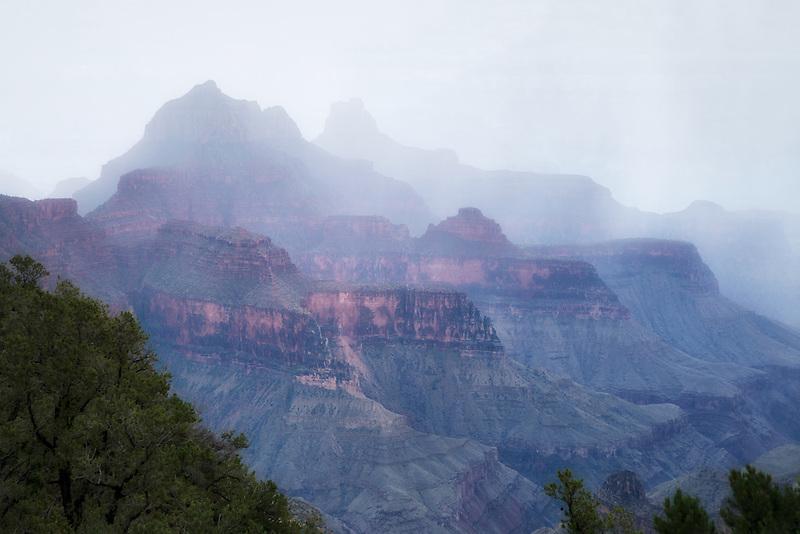 Rain storm. Bright Angel Point, North Rim. Grand Canyon National Park.