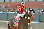 #8 Kiss Moon with jockey Terry J. Thompson aboard after the running of the Honeybee Stakes (Grade III) at Oaklawn Park in Hot Springs, Arkansas-USA on March 8, 2014. (Credit Image: © Justin Manning/Eclipse/ZUMAPRESS.com)
