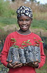 Kentia Jerome, 12, holds seedlings grown for a reforestation project in the mountainous community of Foret-des-Pins, Haiti. Plagued by deforestation, much of it to produce charcoal for urban cooking stoves, residents of the area are working with the Lutheran World Federation and International Orthodox Christian Charities to reforest and protect their environment. In a local nursery, Jerome and other residents are producing seedlings for transplanting onto nearby mountainsides..