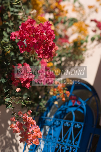 Afrique/Afrique du Nord/Maroc/Rabat: Hotel - Maison d'Hote Villa Mandarine détail flore et grille en fer forgé du patio [Non destiné à un usage publicitaire - Not intended for an advertising use]