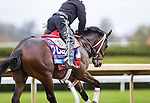 Dreamer's Disease, trained by Robertino Diodoro, exercises in preparation for the Breeders' Cup Juvenile at Keeneland 10.30.20