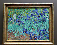 Irises by Vincent VanGough.The Getty Museum.Los Angeles, CA.May 10, 2008.©2008 Kathy Hutchins / Hutchins Photo .