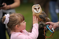 Pictured: Riley Carey, 4 with an owl Saturday 13 August 2016<br />