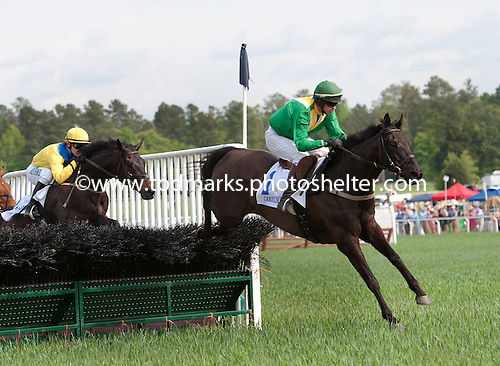Black Jack Blues early in the Carolina Cup.