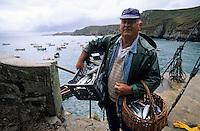 Europe/France/Bretagne/29/Finistère/Cap Sizun/Pointe de Brezellec: Retour de pêche [Non destiné à un usage publicitaire - Not intended for an advertising use]