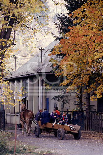 Czech Republic. Family riding in a horse drawn cart in an autmn rural village.