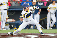 Michigan Wolverines shortstop Michael Brdar (9) squares to bunt against the Eastern Michigan Hurons on May 3, 2016 at Ray Fisher Stadium in Ann Arbor, Michigan. Michigan defeated Eastern Michigan 12-4. (Andrew Woolley/Four Seam Images)
