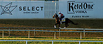 May 13, 2021: Keepmeinmind exercises for the Preakness Stakes at Pimlico Race Course in Baltimore, Maryland. Scott Serio/Eclipse Sportswire/CSM