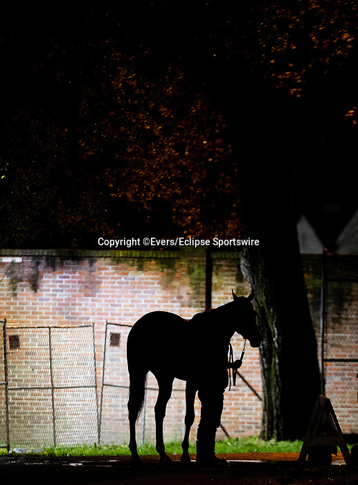 April 29, 2021: Horses train at Churchill Downs in Louisville, Kentucky on April 29, 2021. EversEclipse Sportswire/CSM