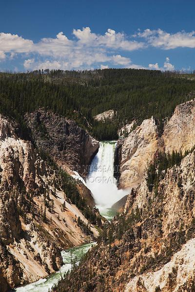 Lower Falls, Canyon Village, Yellowstone National Park, Wyoming, USA
