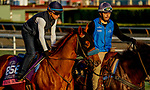 October 27, 2019 : Breeders' Cup Juvenile Turf Sprint entrant Fair Maiden, trained by Eoin G. Harty, exercises in preparation for the Breeders' Cup World Championships at Santa Anita Park in Arcadia, California on October 27, 2019. John Voorhees/Eclipse Sportswire/Breeders' Cup/CSM