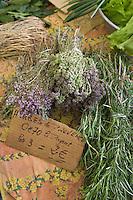 Europe/France/Provence-Alpes-Cote d'Azur/Alpes-Maritimes/Antibes: Herbes de Provence sur un étal du marché cours Massèna