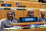 General Assembly Seventy-fourth session, 7th plenary meeting<br /> <br /> Camoroon