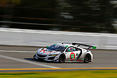 #44: Magnus with Archangel Acura NSX GT3, GTD: John Potter, Spencer Pumpelly, Andy Lally, Mario Farnbacher