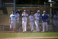 South Dakota State Jackrabbits celebrate a run during a game against the FIU Panthers on February 23, 2019 at North Charlotte Regional Park in Port Charlotte, Florida.  South Dakota State defeated FIU 4-3.  (Mike Janes/Four Seam Images)
