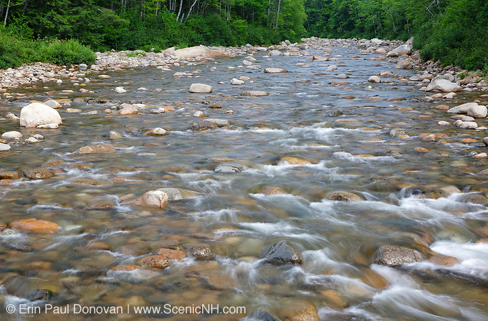 Swift River in Albany, New Hampshire during the summer months. Located in the New Hampshire White Mountains, this scenic river originates in Livermore, and it flows east along the Kancamagus Highway for roughly 26 miles before joining the Saco River in Conway.