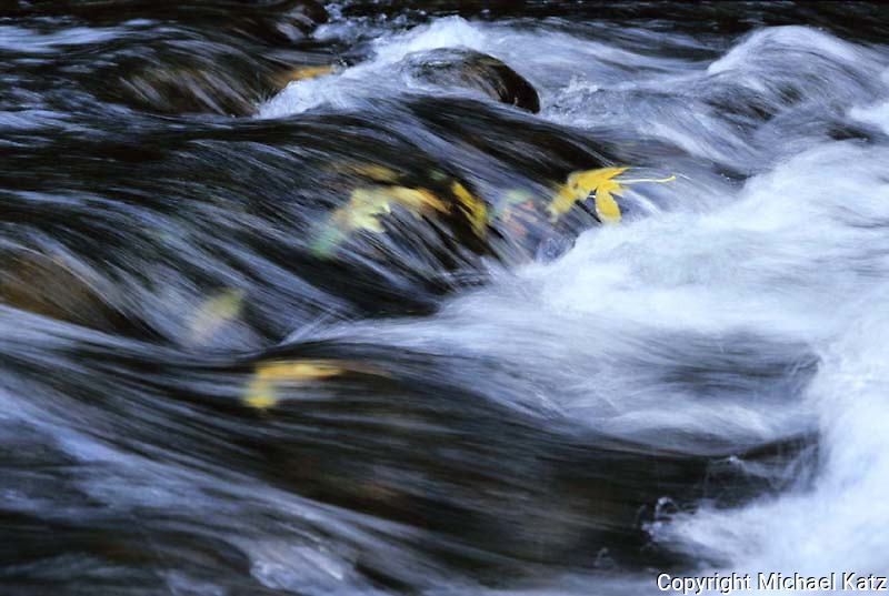 Autumn leaves swirling in cascade, Merced River, Yosemite Valley.