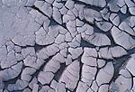 Cracked mud curls under the desert sun, Death Valley National Park, California, USA