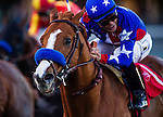 Blueskiesandrainbows ridden by Martin Pedroza wins the Native Diver Handicap on December 14, 2013 at Betfair Hollywood Park in Inglewood, California .(Alex Evers/ Eclipse Sportswire)