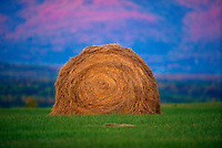 A haystack in a meadow at sunset.