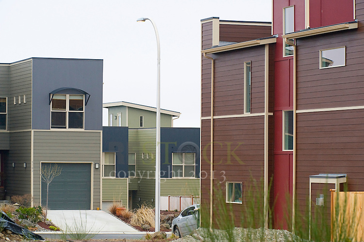 Neighborhood of Modern Homes
