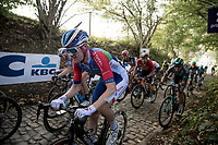 Dries Van Gestel (BEL/Total-Direct Energie) up the Koppenberg<br /> <br /> 104th Ronde van Vlaanderen 2020 (1.UWT)<br /> 1 day race from Antwerpen to Oudenaarde (BEL/243km) <br /> <br /> ©kramon