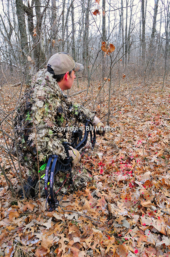 00105-051.18 Bowhunting: Archer xamines blood trail on leafy forest floor.  Hunt, track, spoor, wound.