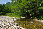Franconia Brook in the Pemigewasset Wilderness in the White Mountain National Forest in New Hampshire during the summer months.
