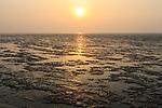 Yellow Sea mudflats at Yalu Jiang Nature Reserve. China. April.