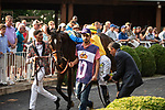 ARLINGTON HEIGHTS, IL - AUGUST 11: #10, Robert Bruce, the Chilean bred 4 year old wins the $1,000,000 Grade I Arlington Million at Arlington Park on August 11, 2018 in Arlington Heights, Illinois. (Photo by Carson Dennis/Eclipse Sportswire/Getty Images)