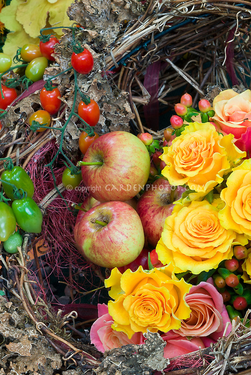 Harvest basket of apples fruits, roses, Heuchera, flowers, vegetables, autumn picked fall crops, from edible garden, cut flowers, arrangement, pretty variety of mixed plants Northern Spy heirloom antique apple variety, Malus domestia 'Northern Spy'. The 'Northern Spy' apple, also called 'Spy' and 'King', is a cultivar of domesticated apple that originated in East Bloomfield, New York in about 1800.