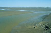 Eider-Mündungsbereich mit Wattflächen bei Niedrigwasser, Ästuar