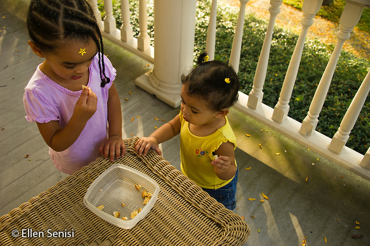 MR / Schenectady, NY. Sisters snack on crackers. Left: girl, 2, African American & Caucasian; Right: infant (girl, 10 months, African American & Caucasian). MR: Dal4. ID: AL-HD. © Ellen B. Senisi