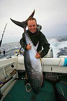 Southern bluefin tuna, Thunnus maccoyii, and angler, sportfishing