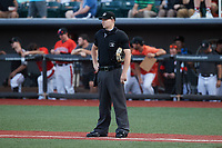 Home plate umpire Adam Pierce during the game between the Hudson Valley Renegades and the Aberdeen IronBirds at Leidos Field at Ripken Stadium on July 23, 2021, in Aberdeen, MD. (Brian Westerholt/Four Seam Images)