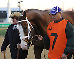 Will Take Charge walks over for the Clark Handicap at Churchill Downs, 11-29-13, for trainer D. Wayne Lukas and owner Willis Horton.