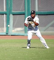 Michael Taylor - Phoenix Desert Dogs - 2010 Arizona Fall League.Photo by:  Bill Mitchell/Four Seam Images..
