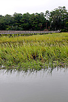 South Carolina, SC, Hilton Head, beach, Island, birds, lightening, docks, etc.
