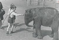 1967 FILE PHOTO - ARCHIVES -<br /> <br /> Children's zoo in safari; a corner of imitation Africa in La Ronde; is pretty routine for adults but children get a thrill out of petting a real baby elephant. La Ronde; Expo's imaginative amusement area; is an expensive place to take children but there are exceptions: Children's World has a free playground with a marvellous slide - a gigantic; brilliantly colored snake which youngsters hurtle through from tail to mouth. Crowds are spread evenly through area.<br /> <br /> PHOTO : Reg INNELL - Toronto Star Archives - AQP